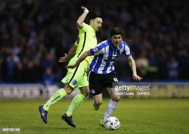 Sheffield Wednesday's Fernando Forestieri and Brighton's Richie Towell