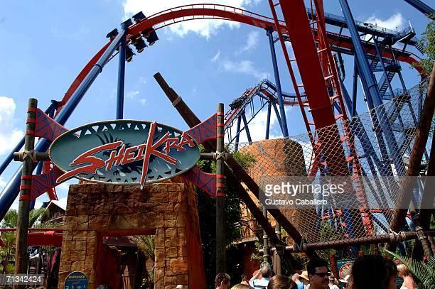 Sheikra Roller coaster at Busch Gardens amusement park on June 23 2006 in Tampa Florida