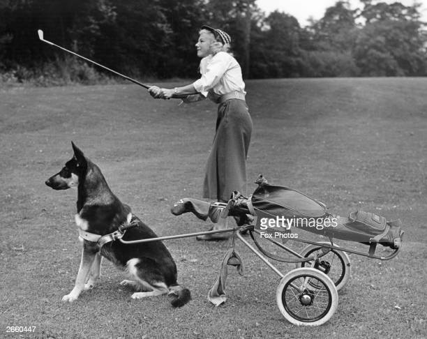 Sheila Hamilton with her Alsatian caddy during a golf match at Primer Hill.