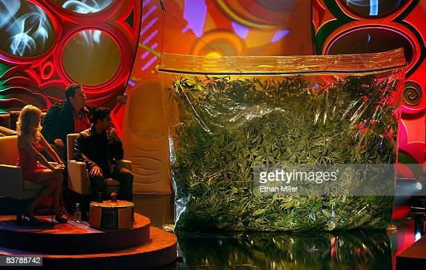 Shelby Chong Ralphie May and Wilmer Valderrama wait for Cheech Marin and Tommy Chong to emerge from a prop bag of marijuana at their roast at The...