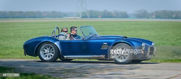 cobra kit car sverige