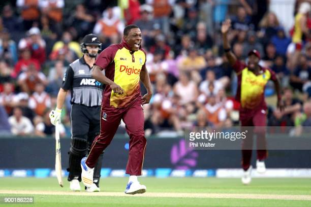 Sheldon Cottrell of the West Indies celebrates the wicket of Martin Guptill of New Zealand during game two of the Twenty20 Series between New Zealand...