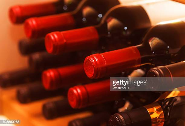 Shelf with red wine bottles