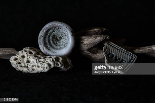 shell coral driftwood and broken love sign - andy rinkoff stock pictures, royalty-free photos & images