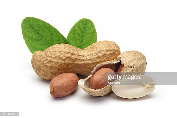 shelled peanuts and leaves - peanuts stockfoto's en -beelden