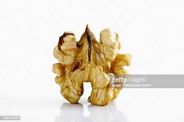 Shelled walnut on white background, close-up