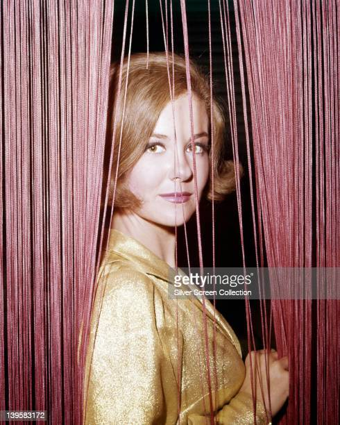 Shelley Fabares US actress wearing a gold blouse holding a red flowers posing in a split in a red string curtain in a studio portrait circa 1965