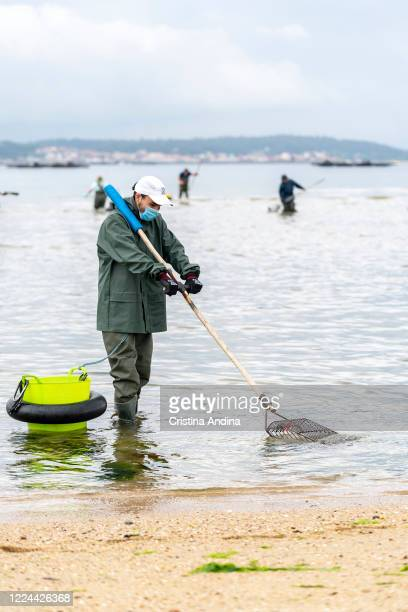 Shellfisherman Adrián González wearing a surgical mask shows the photographer how to collect the clam on May 12 2020 in A Pobra do Caramiñal...