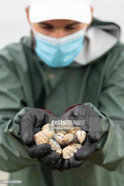 Shellfisherman Adrián González wearing a surgical mask shows the photographer the first clams he collects on May 12 2020 in A Pobra do Caramiñal...