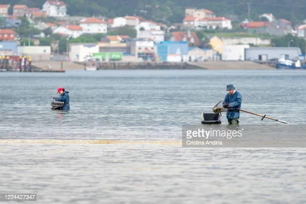 Shellfishermen in the Ría de Arousaon May 12, 2020 in A Pobra do Caramiñal, Spain.The shellfishermen of A Pobra do Caramiñal returned to Arenal...