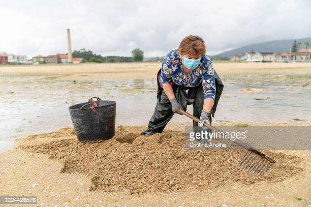 Shellfisherwoman Marisa Calo wearing a surgical mask shows to the photographer how the clam is collected with a rake on May 12 2020 in A Pobra do...