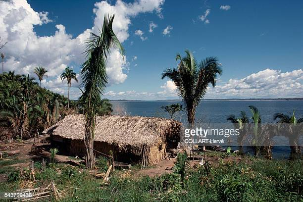 Shelters made from palm leaves on the shores of the Tocantins river built to house nut harvesters from Para near the Tucurui dam