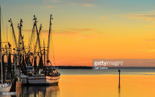 shem creek sunset - template_talk:south_carolina stock pictures, royalty-free photos & images