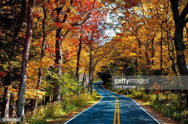 shenandoah autumn - hank vermote stock pictures, royalty-free photos & images