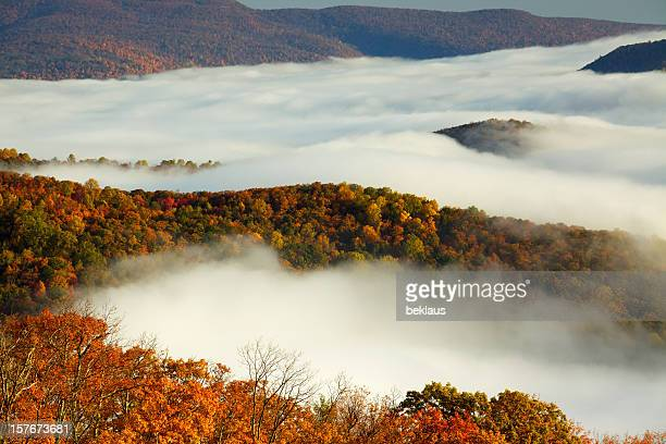 shenandoah national park - skyline drive virginia stock photos and pictures
