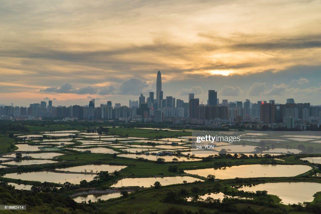 Shenzhen city : Stockfoto