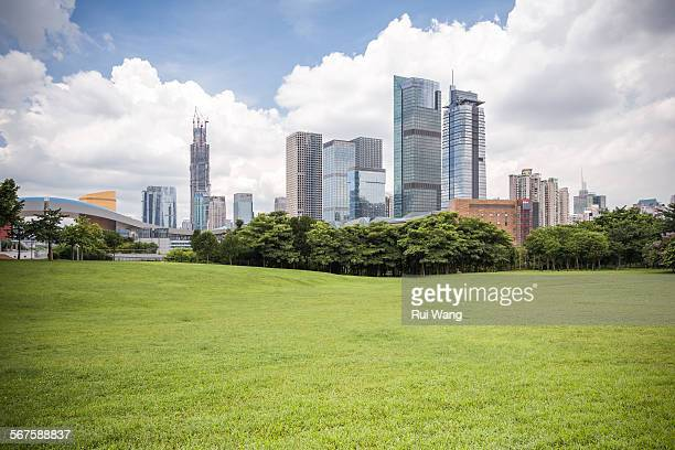Shenzhen Skyline beside Meadow