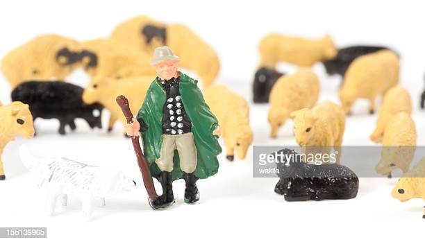shephard e sheeps figurinos