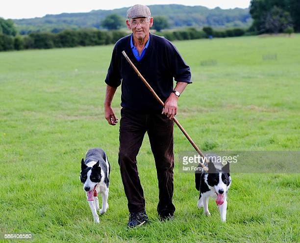 Shepherd Bob Harland from Pickering walks with his dogs after taking part in the Brace Run at the British National Sheep Dog Trials on August 6, 2016...