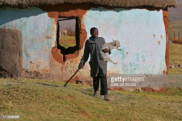 A shepherd boy is pictured on June 26 2013 after catching a stray lamb in Qunu the rural where former South African President Nelson Mandela grew up...