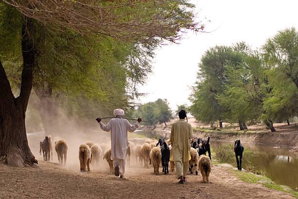 Bahawalpur, Pakistan Bahawalpur, Pakistan