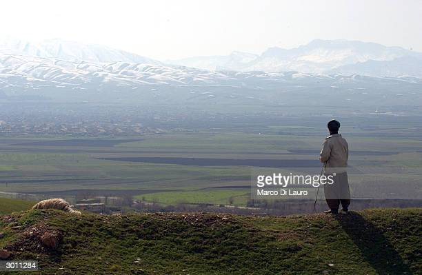 Shepherd stands looking out towards the mountains where a mass grave site of most of the victims of the March 16, 1988 chemical attacks on Halabja...