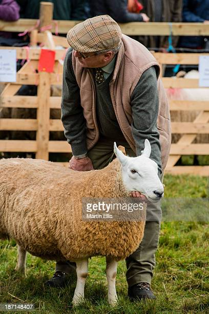 CONTENT] A shepherd with his prize ewe awaits the judges at the Alwinton Border Shepherd's Show 2013