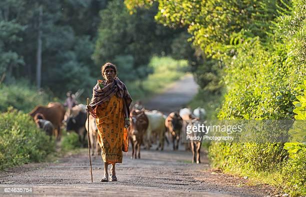 Shepherders, Araku Valley