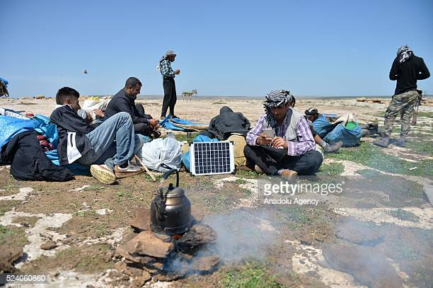 Shepherds cook and eat some food as they charge their phones with solar panels carried by donkeys in Turkey's Sanliurfa on April 25 2016 Shepherds...