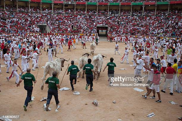Shepherds guide the steers across the bullring following the Cebada Gago fighting bulls on the third day of the San Fermin runningofthebulls on July...