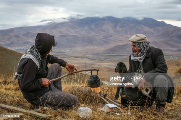 Shepherds Osman Faran and Gurgin Dinc wait for the boiling tea as they rest with their sheep on the way to their villages from a highland of Van's...
