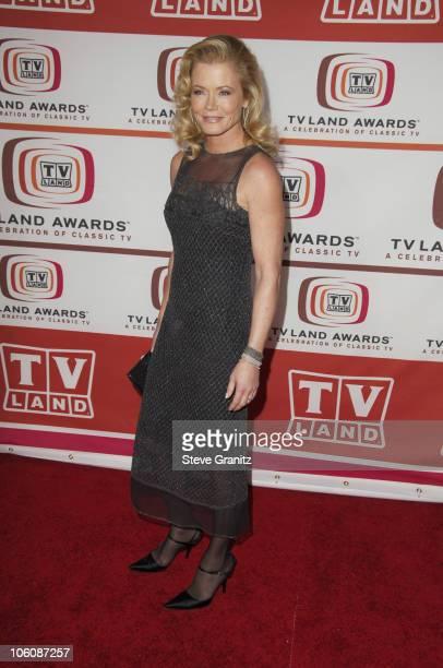 Sheree J Wilson during 4th Annual TV Land Awards Arrivals at Barker Hangar in Santa Monica California United States