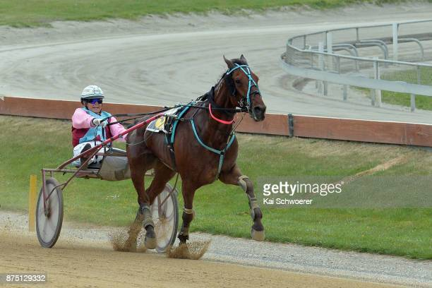 Sheree Tomlinson driving Amaretto Sun wins Race 9 Haras Des Trotteurs Dominion Trot during Show Day Races at Addington Raceway on November 17 2017 in...
