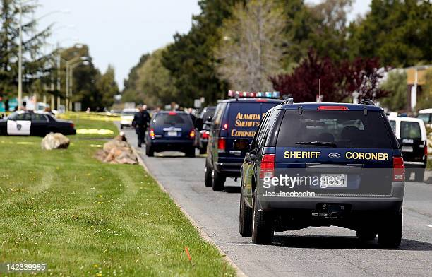 Sheriff coroner vans drive to the bodies of the shooting victims at Oikos University as police survey the scene on April 2 2012 in Oakland California...