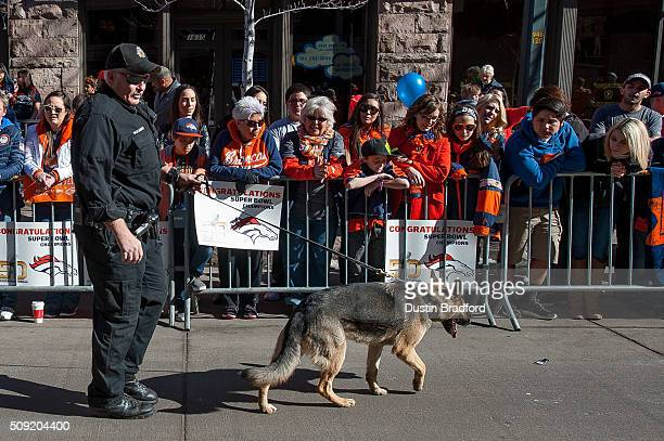 A sheriff department officer walks a department dog to smell for explosives as Denver Broncos fans line the street before Broncos players and...