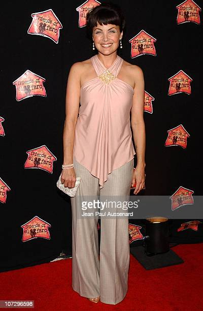 Sherilyn Fenn during Molly Sims Hosts the 3rd Annual 'Night With The Friends of El Faro' Benefit Arrivals at Henri Fonda Theatre in Hollywood...