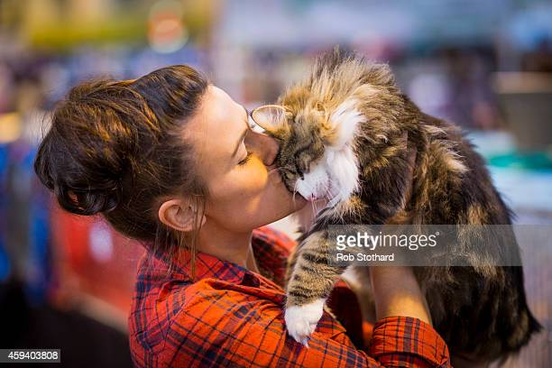 Sherman, a Norwegian Forest Kitten, is kissed by its owner before being judged at the Governing Council of the Cat Fancy's 'Supreme Championship Cat...