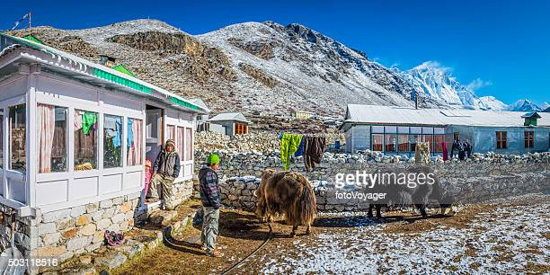 Sherpa family yaks traditional teahouse Himalayan mountain peaks panorama Nepal