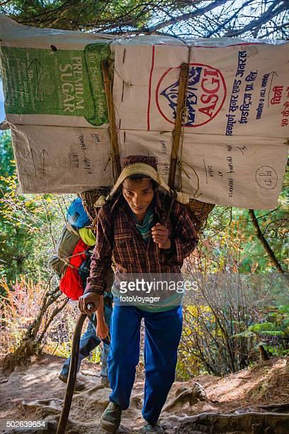 シェルパポーター重い負荷アロングマウンテンコースヒマラヤネパール - 職業 ポーター ストックフォトと画像