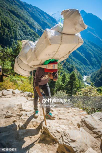 sherpa porter carrying huge load along trail himalayan mountains nepal - nepalese ethnicity stock pictures, royalty-free photos & images