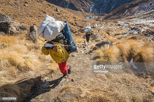 sherpa porters carrying heavy expedition loads in himalayas nepal - machapuchare stock photos and pictures