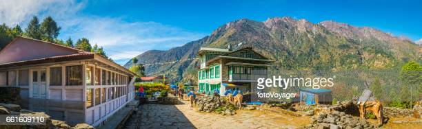 Sherpa village teahouses on Everest Base Camp trail Himalayas Nepal