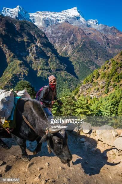 Sherpa yak driver on mountain trail high in Himalayas Nepal