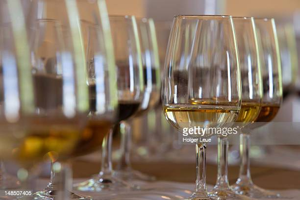 sherry tasting at bodega tio pepe gonzales byass. - jerez de la frontera stock pictures, royalty-free photos & images