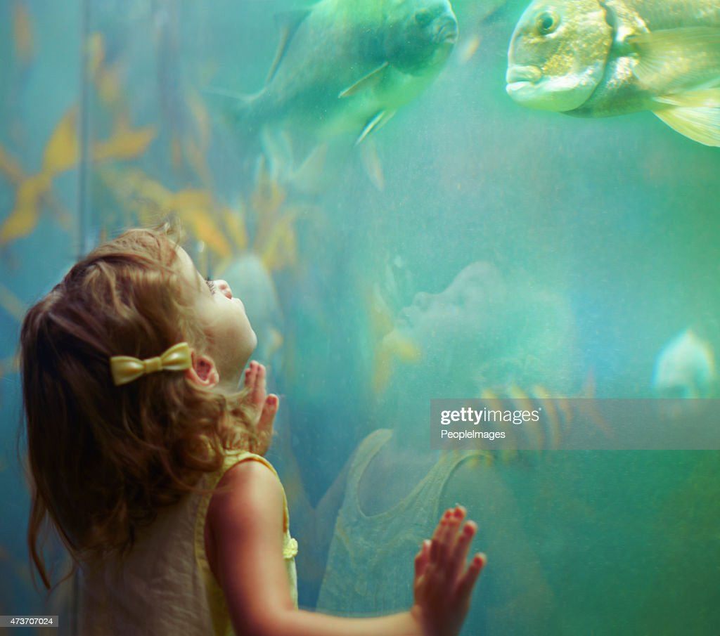 She's a curious little girl : Stock Photo