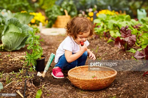 she's already got a green thumb - local produce stock pictures, royalty-free photos & images