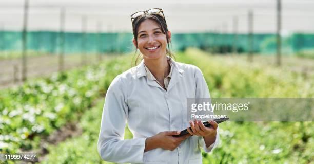 ela é uma especialista neste campo. - cena rural - fotografias e filmes do acervo