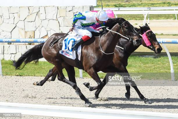 Maxey Campo ridden by Andrew Mallyon wins the Fulton Hogan BM64 Handicap at Racingcom Park Synthetic Racecourse on September 24 2018 in Pakenham...