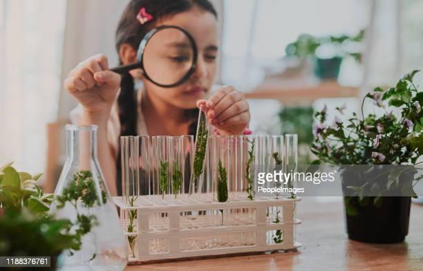 she's got good analysis skills - experiência científica imagens e fotografias de stock