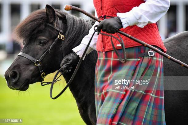 Shetland Ponies are shown on day one of The Royal Highland Show on June 202019 in EdinburghScotlandThe show which is held at Ingliston started today...